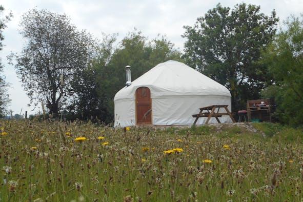 Bryn Helyg Yurt