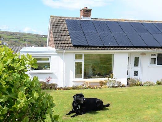 Dolwyn - dog friendly cottage