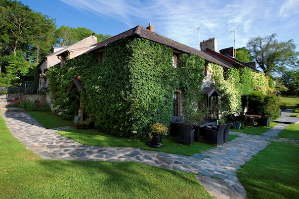 The cottage exterior with ivy growing over it