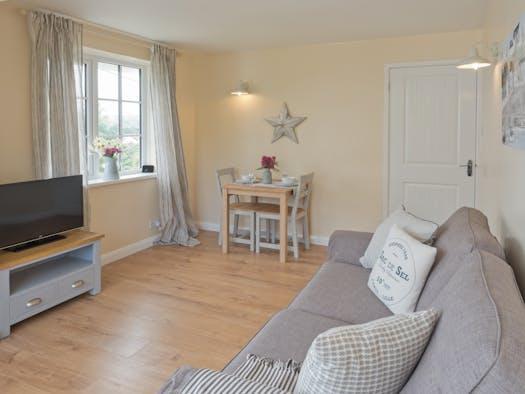 sofa, TV, window, dining area