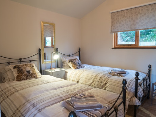 Bedroom with two beds, one bedside drawer unit and lamp, mirror, window