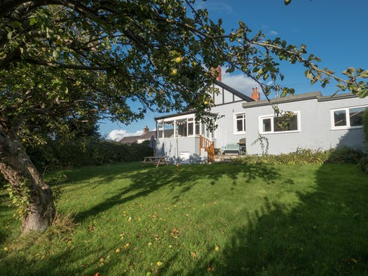 Glenview rear garden with apple tree and lawned area with house in the backgorund