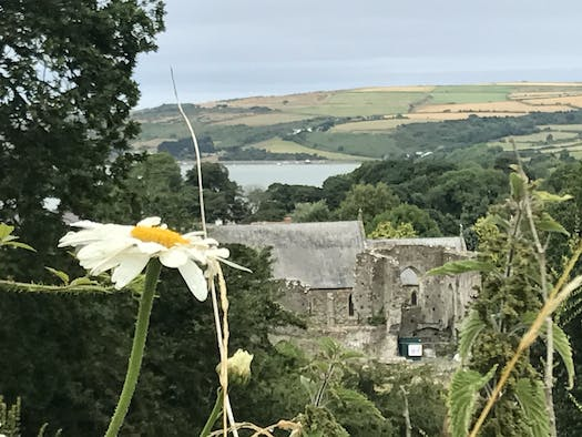 View over St Dogmaels Abbey from Gwawrfryn