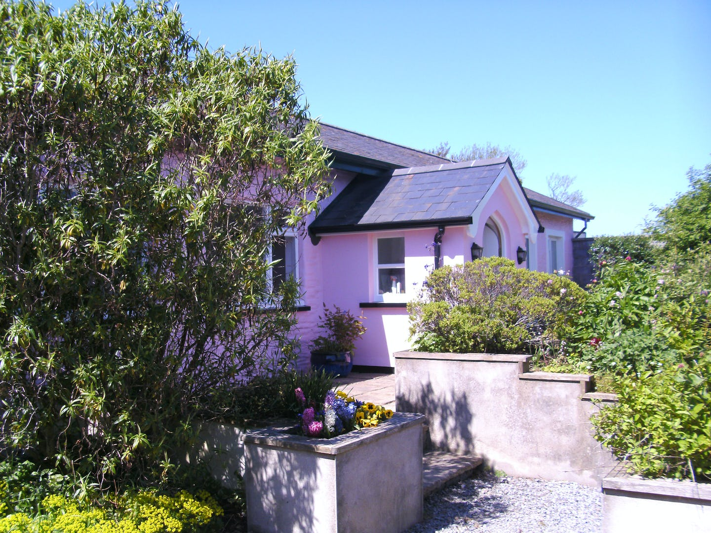 New Quay Wales Holiday Cottages Dog Friendly