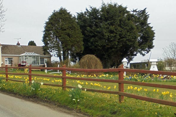 Large garden with Park View Cottage behind. Spring daffodils in bloom