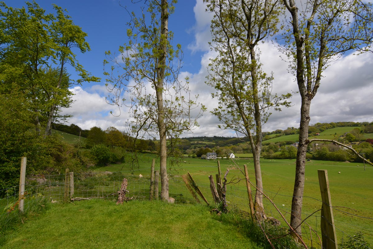 Y Beudy Pet Friendly Holiday Cottage At Wenallt